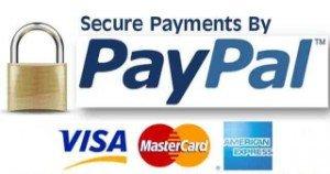 paypal-logo-sm1